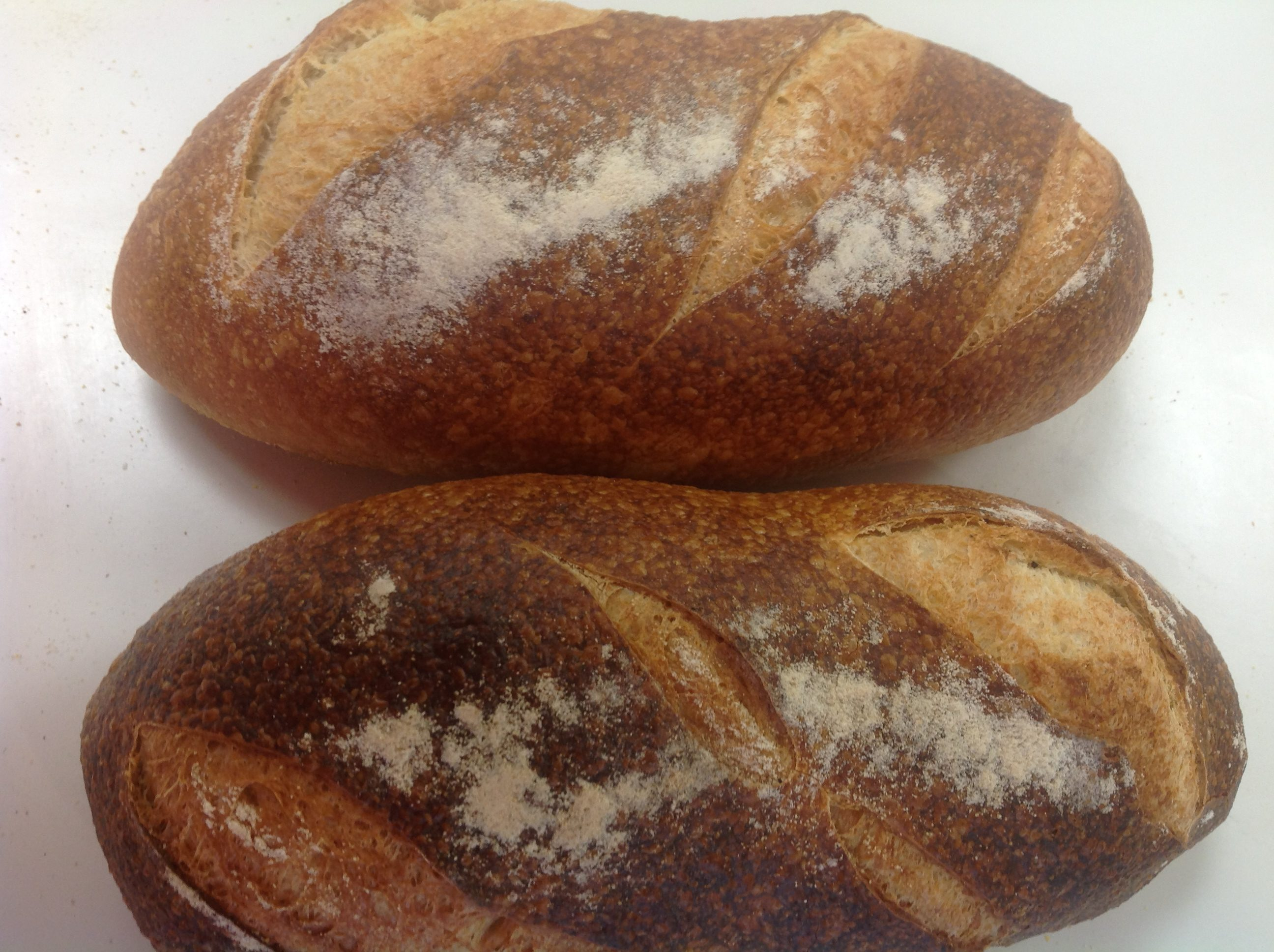 Italian and French Bread at Dolce and Biscotti Italian Bakery