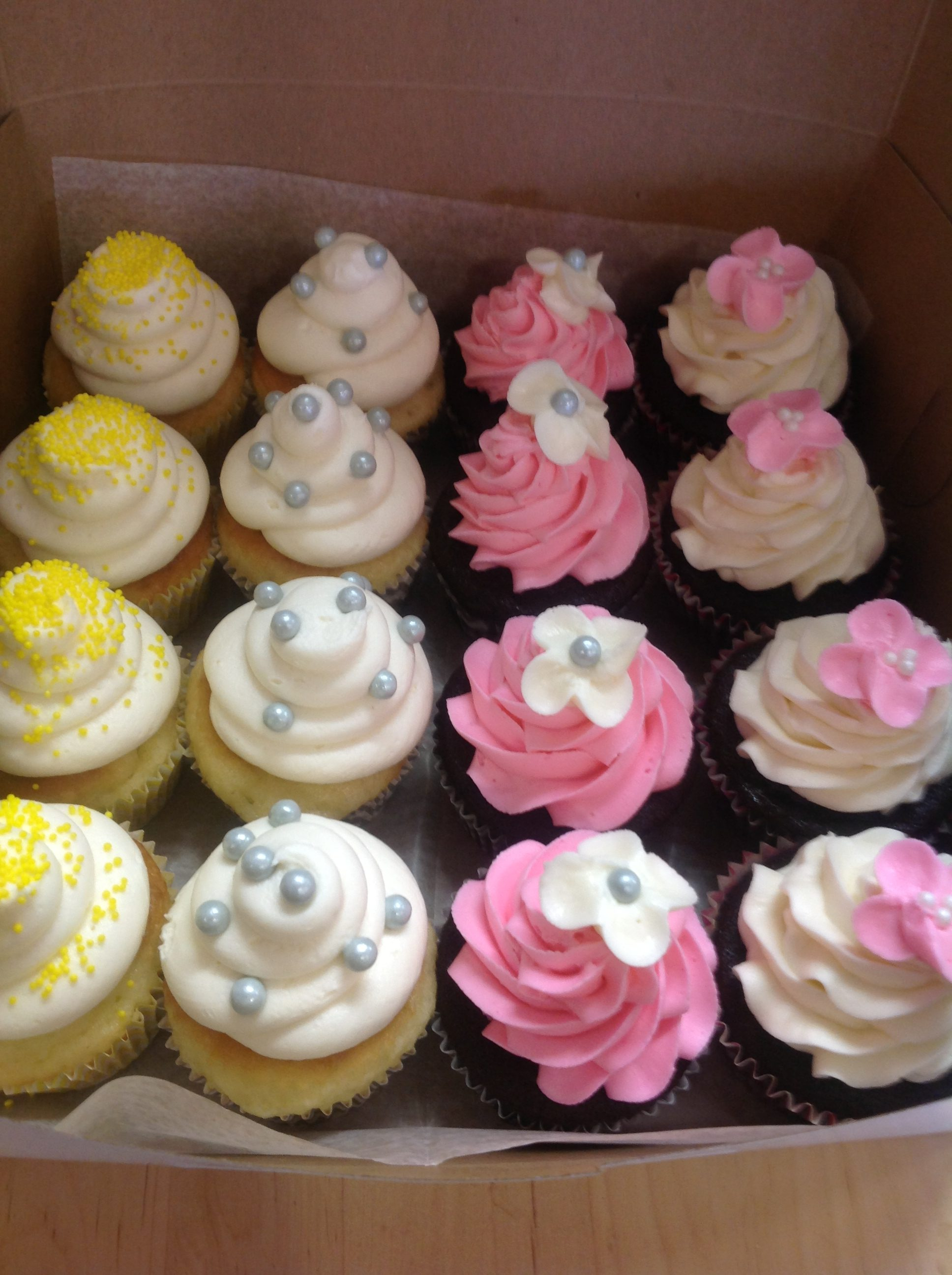 Assorted Cupcakes at Dolce and Biscotti Italian Bakery